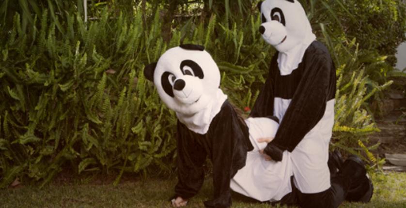 salve os pandas